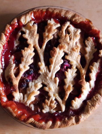 Apple Cranberry Pie - Tamara Central