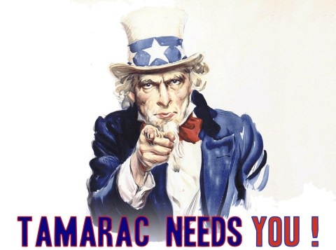 Uncle-Sam-Tamarac