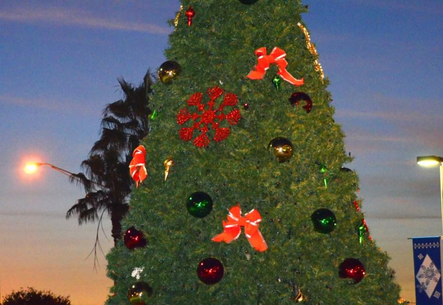 Tamarac-Christmas_edited-1