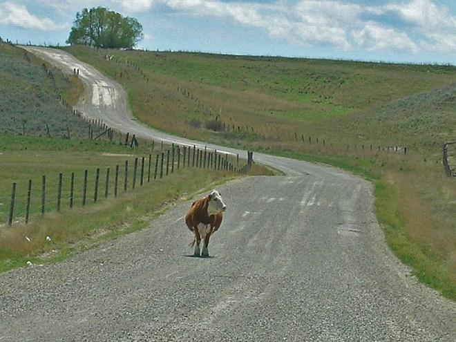 Nairada, Montana