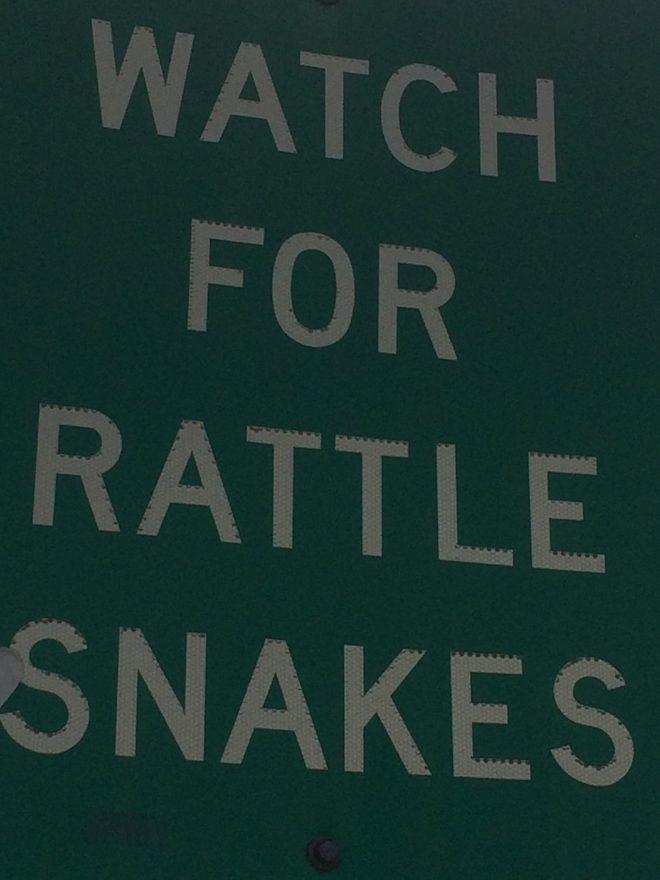 Washington, rattlesnakes