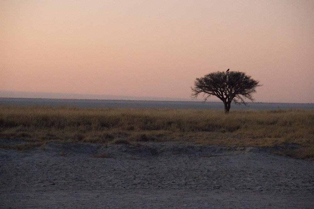 Magkadigkadi Salt Pans, Botswana, Africa
