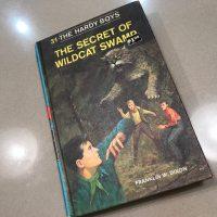 Hardy Boys Book 18