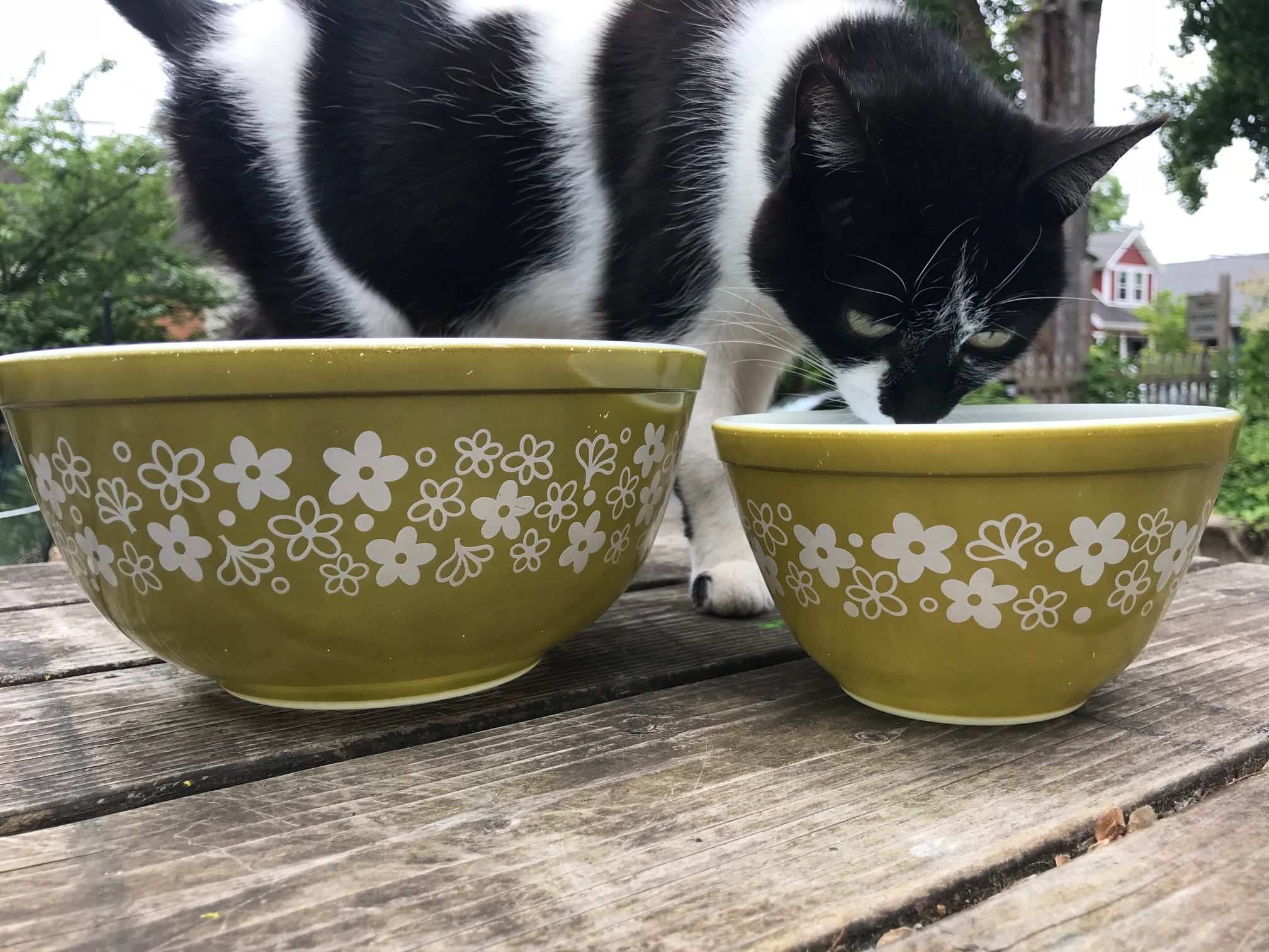 Vintage Pyrex Spring Blossom Green Mixing Bowls