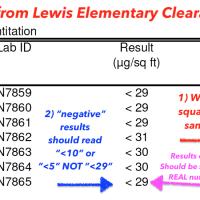 Lewis Elementary School Test Results Tamara Rubin