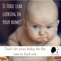 Lead Safe Mama Protect Your Baby From Lead