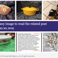 February 20 2019 Lead Safe Mama Newsletter
