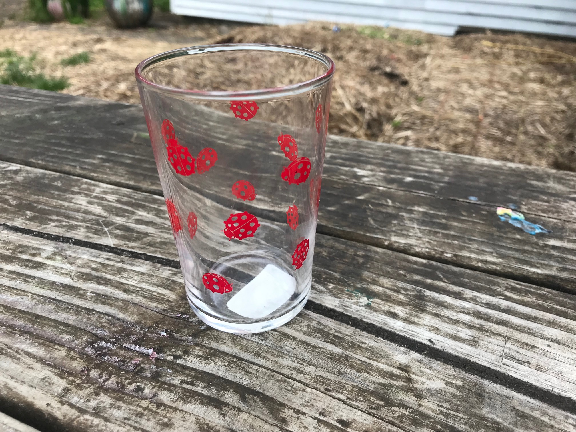 Clear Conique Luminarc 7 oz Ladybug Juice Glass - purchased at New Seasons Market in May of 2019