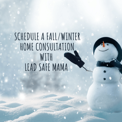 Are you interested in scheduling a one-on-one (in person / socially distanced / CoViD-19 safe) consultation with Lead Safe Mama?