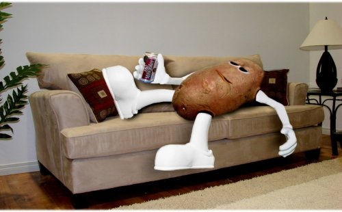 couch-potato-785271