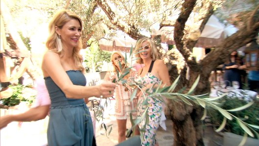 Real Housewives of Beverly Hills Recap: Extending The Olive Branch