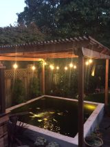 Koi Pond and Pergola