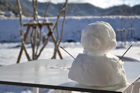 20140110雪が降りました002