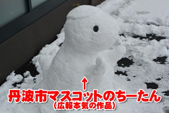 丹波に雪007