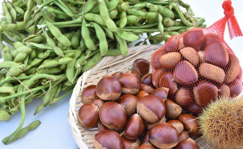 黒枝豆と丹波栗
