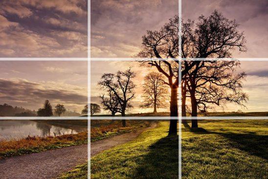 12 Komposisi Foto Agar Lebih Menarik