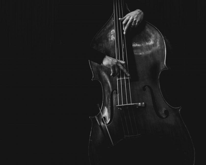 Alat musik petik bass