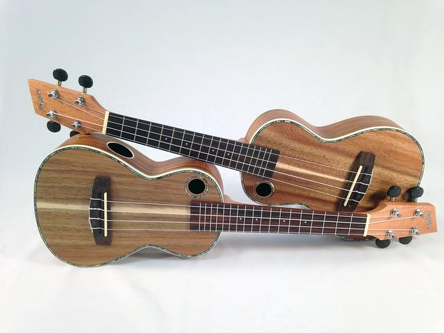 Alat musik petik ukulele