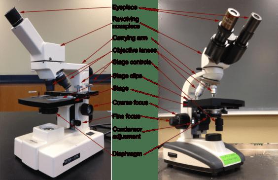 Mikroskop Monokuler dan Binokuler