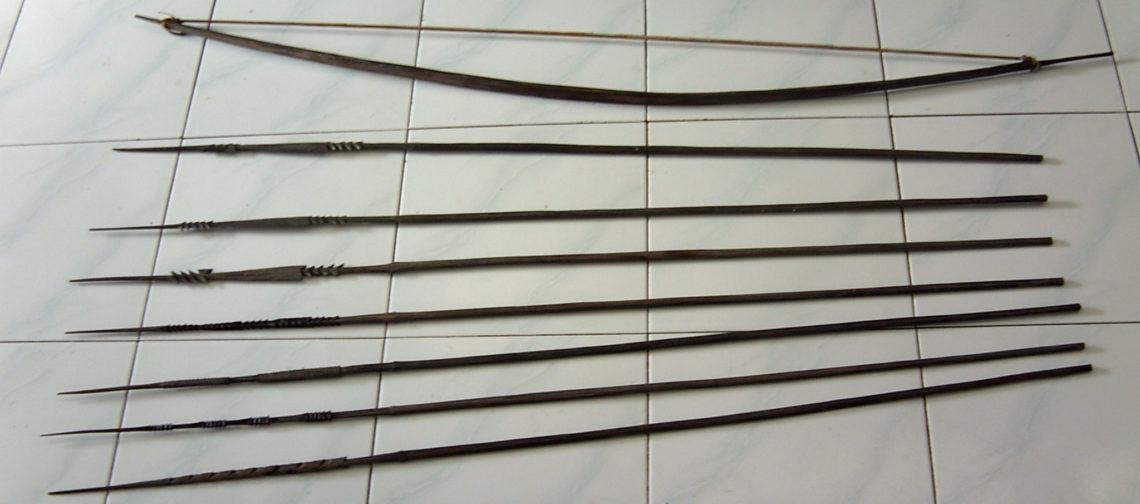 Busur dan Panah Papua