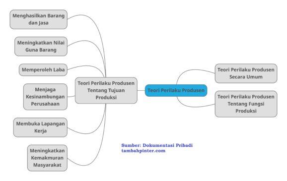 Teori Perilaku Produsen dalam Ekonomi
