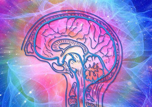 Definisi psikologi kognitif