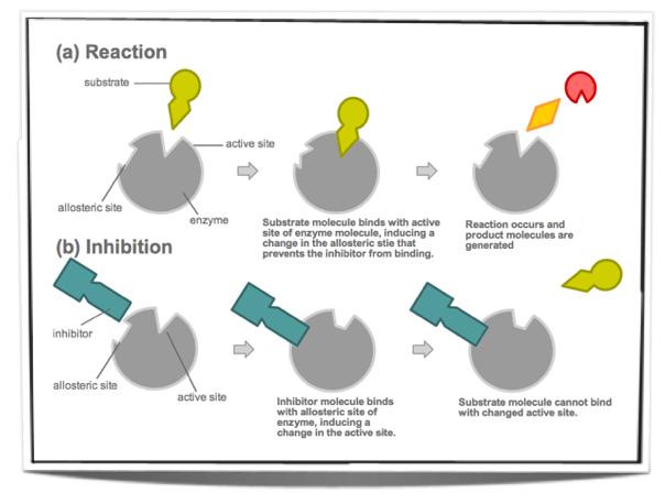 Inhibitor Non-Kompetitif