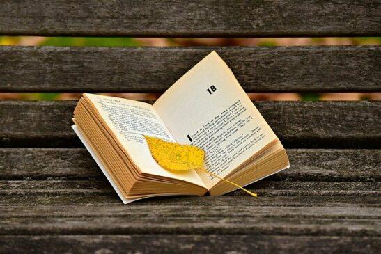Unsur Intrinsik dan Ekstrinsik Novel