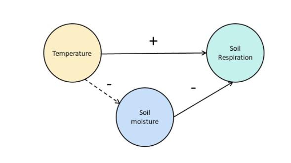 Suhu dan Respirasi Tanah