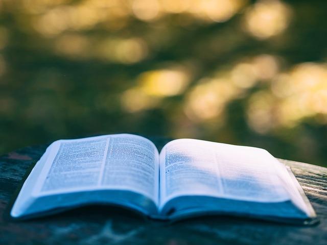 Lakukan Proofreading dan Revisi