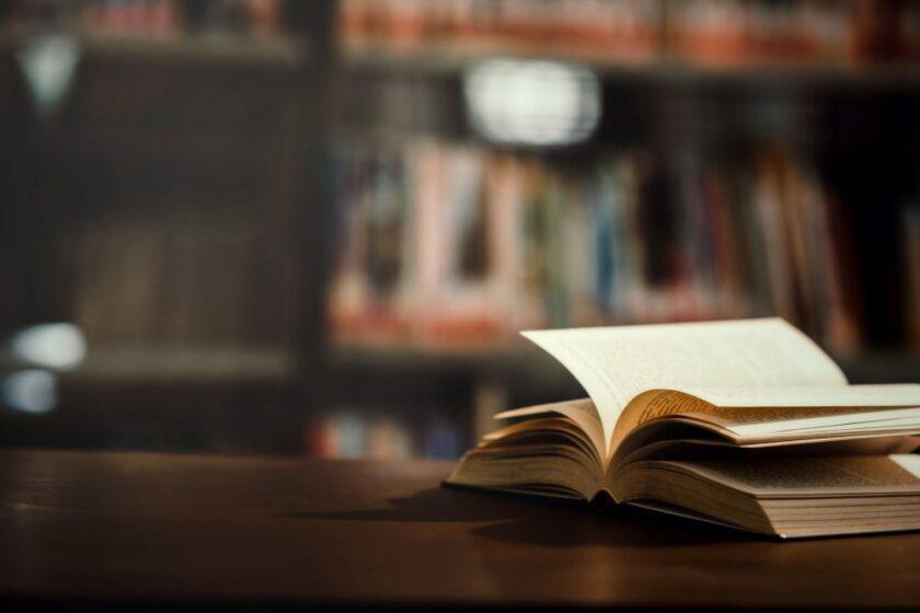 Cantumkan Literature Review yang Relevan
