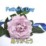 父の日にはどうする?花を贈る?品物は何にする?イベントは?