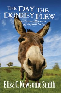 The Day the Donkey Flew, Fiction, Young Adult, Children, Spiritual, Inspirational