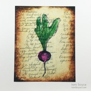 Beet, Kitchen Series