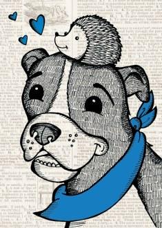 Blue_Pet Portrait