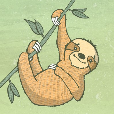 Sloth Color