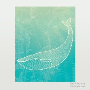 aquatic_whale on white