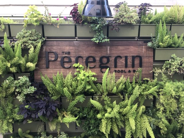 Front sign at the Peregrin Rooftop Lounge