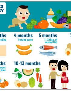 Food chart for your baby also rh tamilldsky