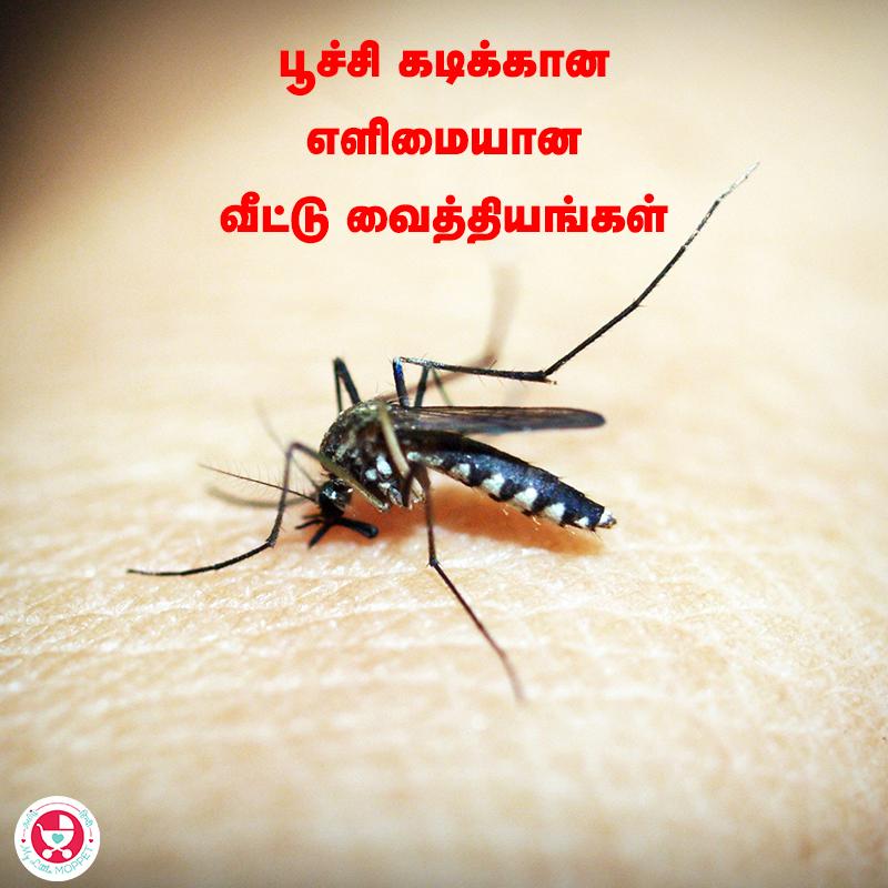Poochi Kadikkana Veetu Viathiyam
