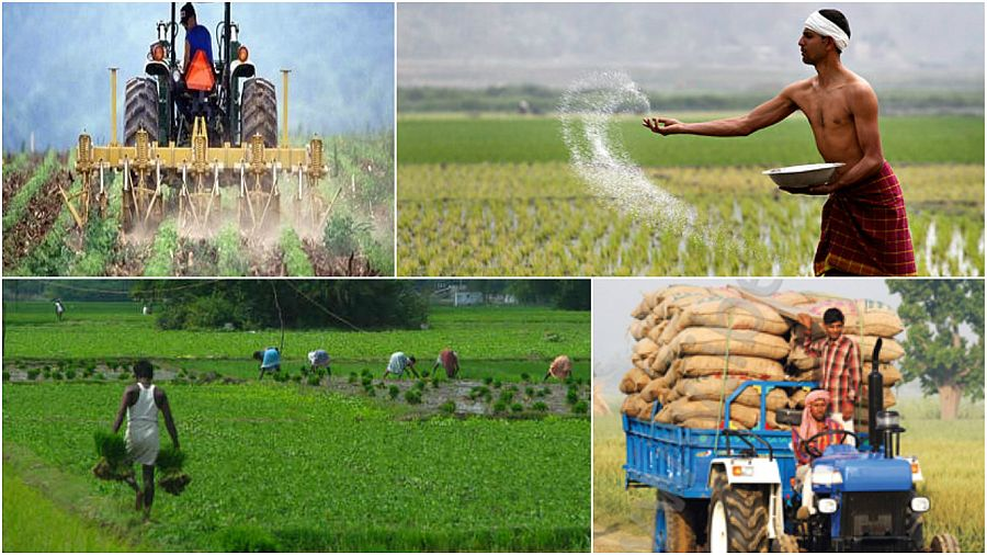 agriculture-industry-india