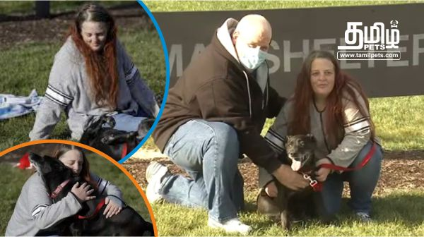 Lola Reunites With Her Owners After Three Years