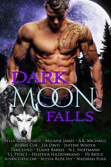 Dark Moon Falls-ebook