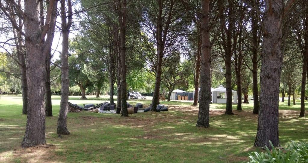 boschendal-werf-picnic-area