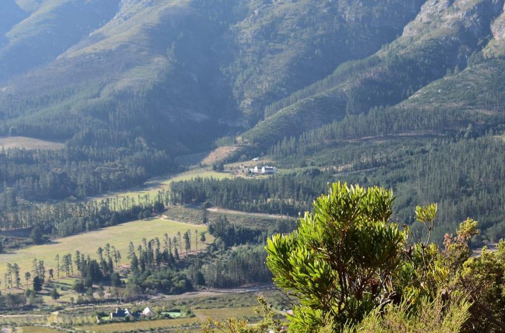 franschhoek-pass-western-cape