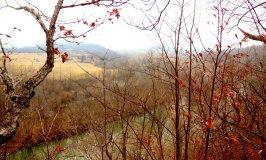 Lead Mine Conservation Area 3.16.2013