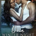 One Winter Night: A Sexy Bad Boy Holiday Novel