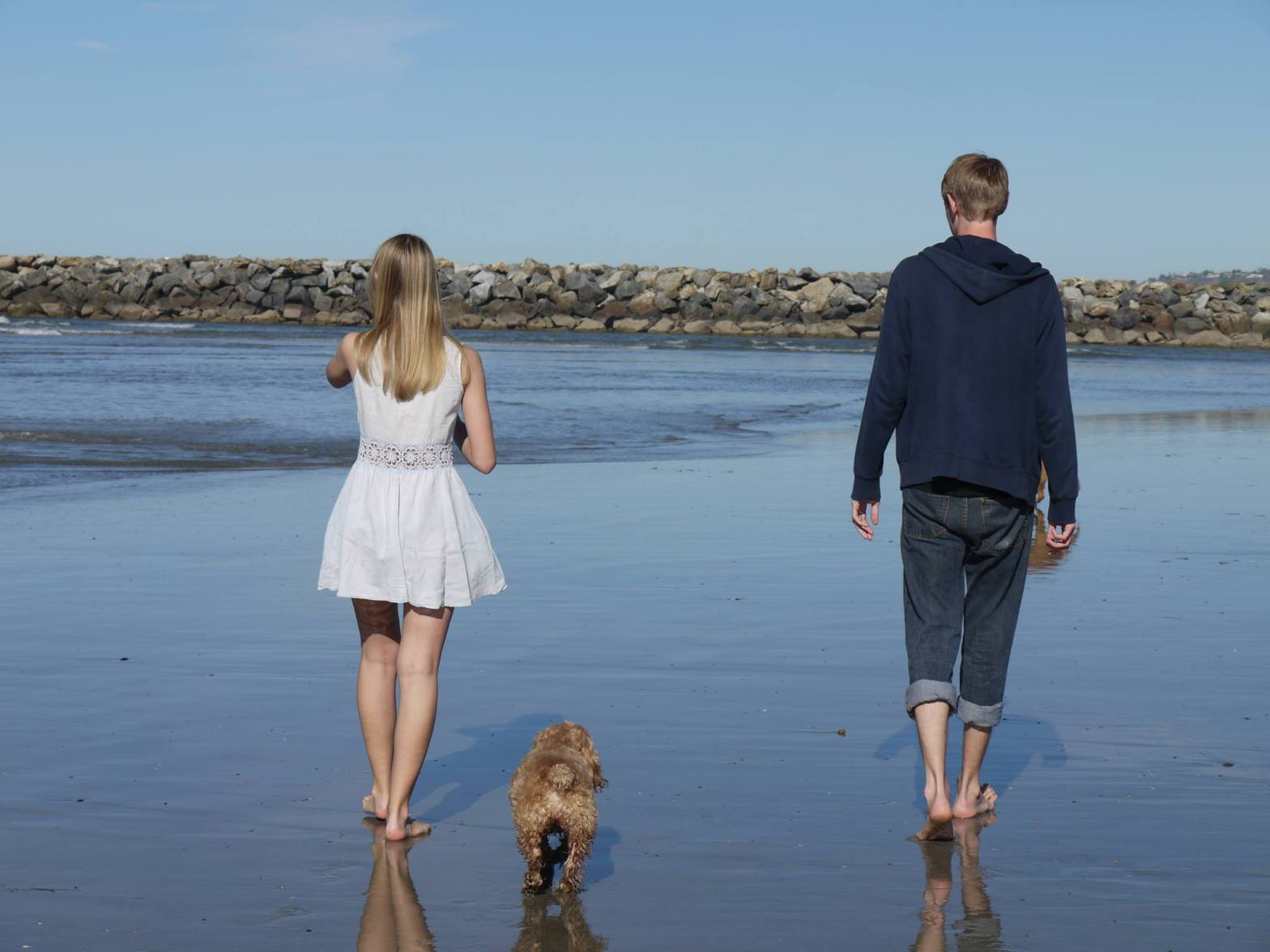 Two people and a dog walking on the beach