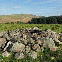 Environmental art - Andy Goldsworthy and the Sheepfolds