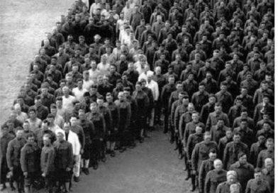 Почаст коњима српске војске
